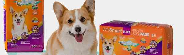 Free WizSmart Dog Pads